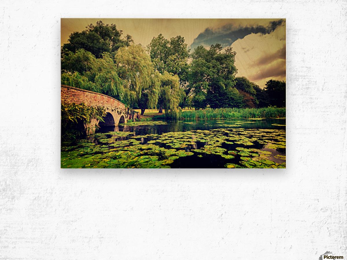 Zen Meditation Lily Pond Wood print