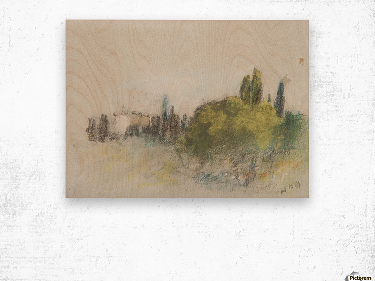 Villa Arson Wood print