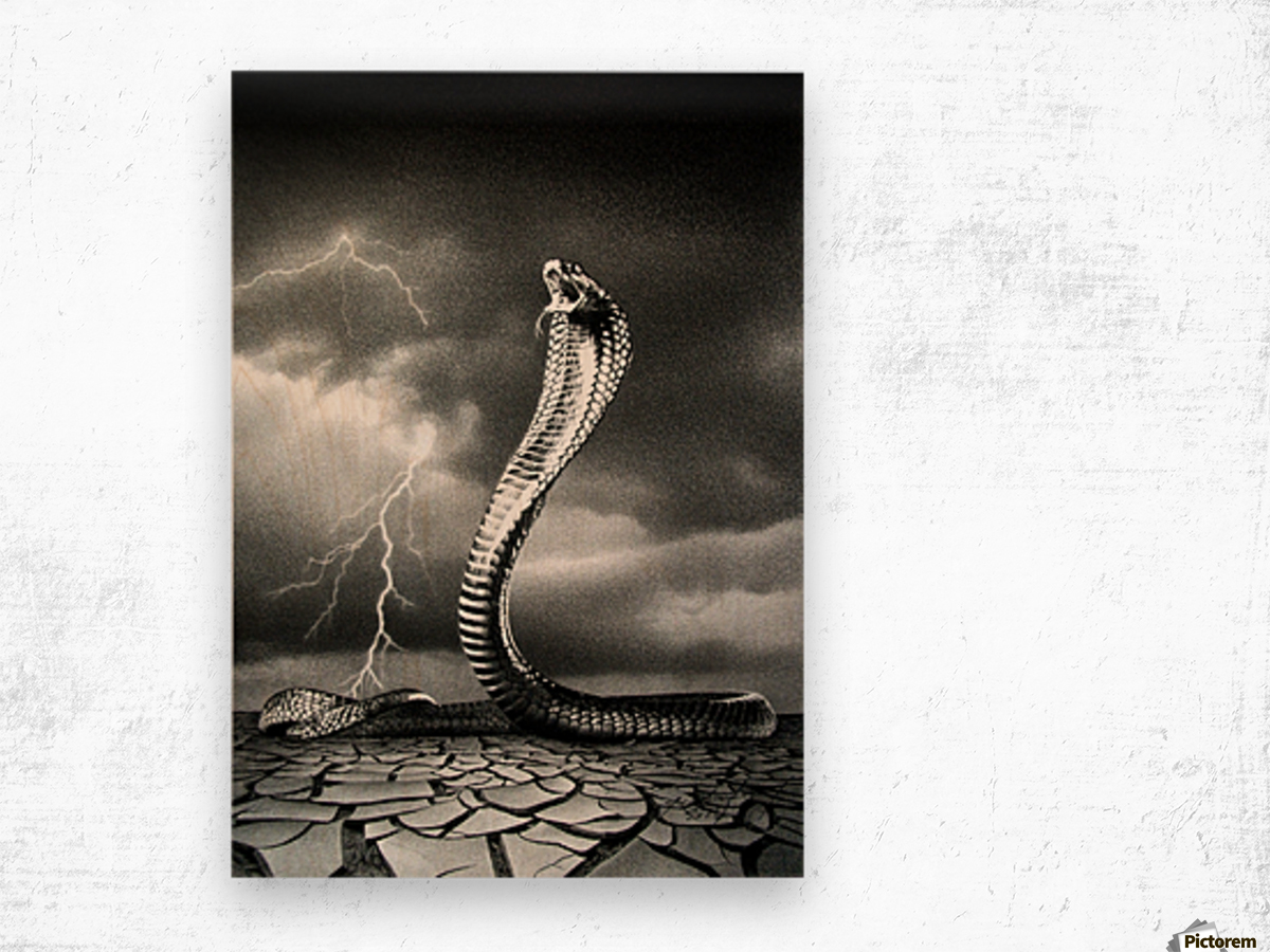 THE STORM IS COMING... Wood print