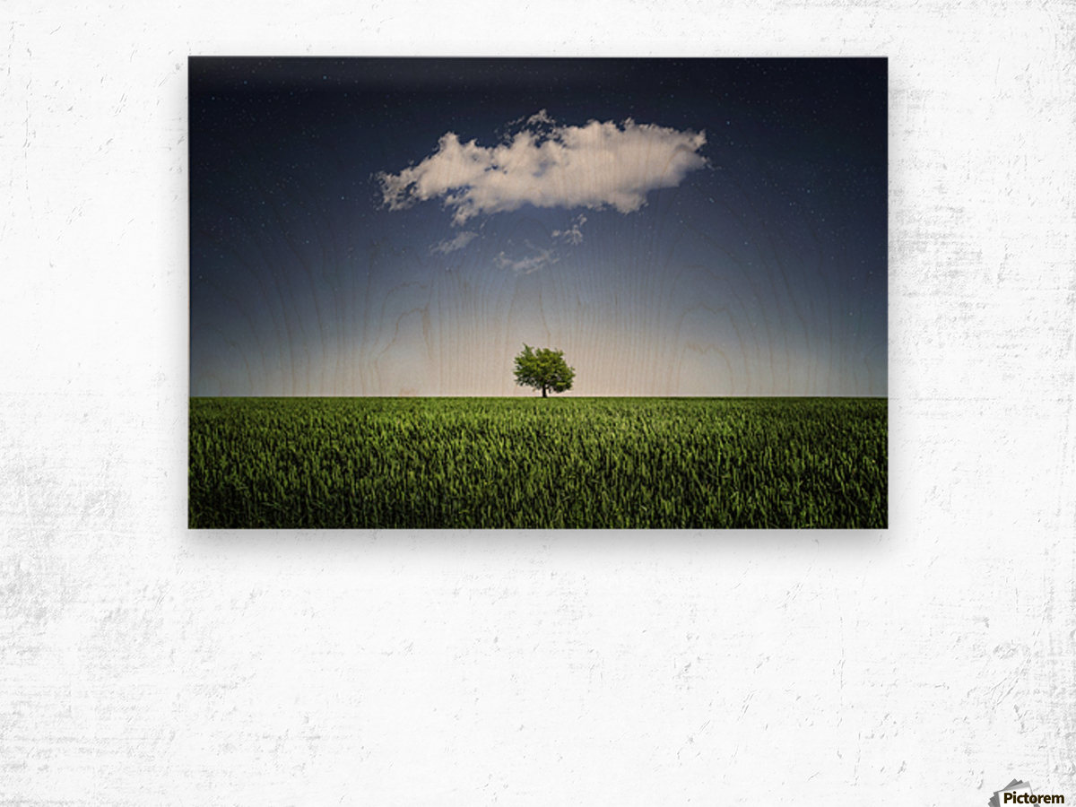 A tree covered with clouds Wood print