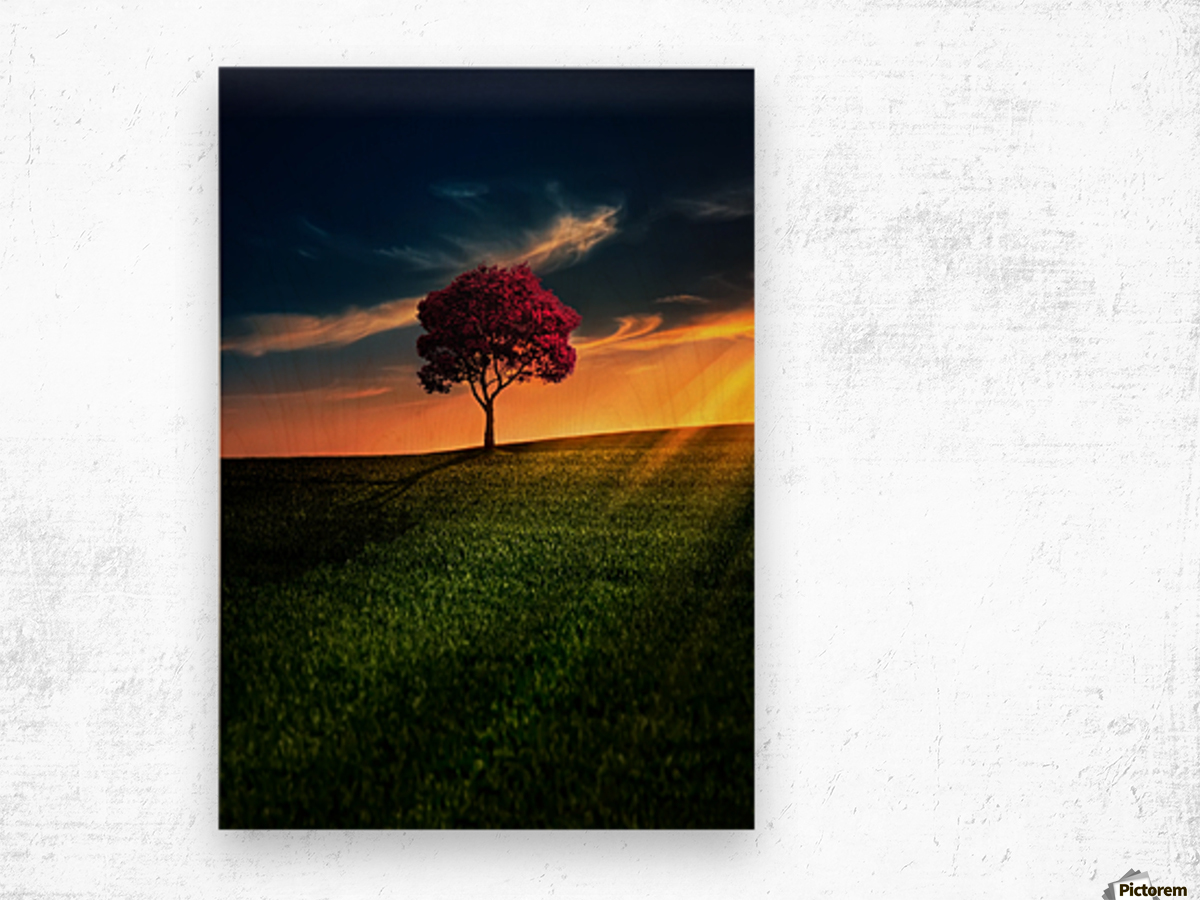 Awesome Solitude Wood print