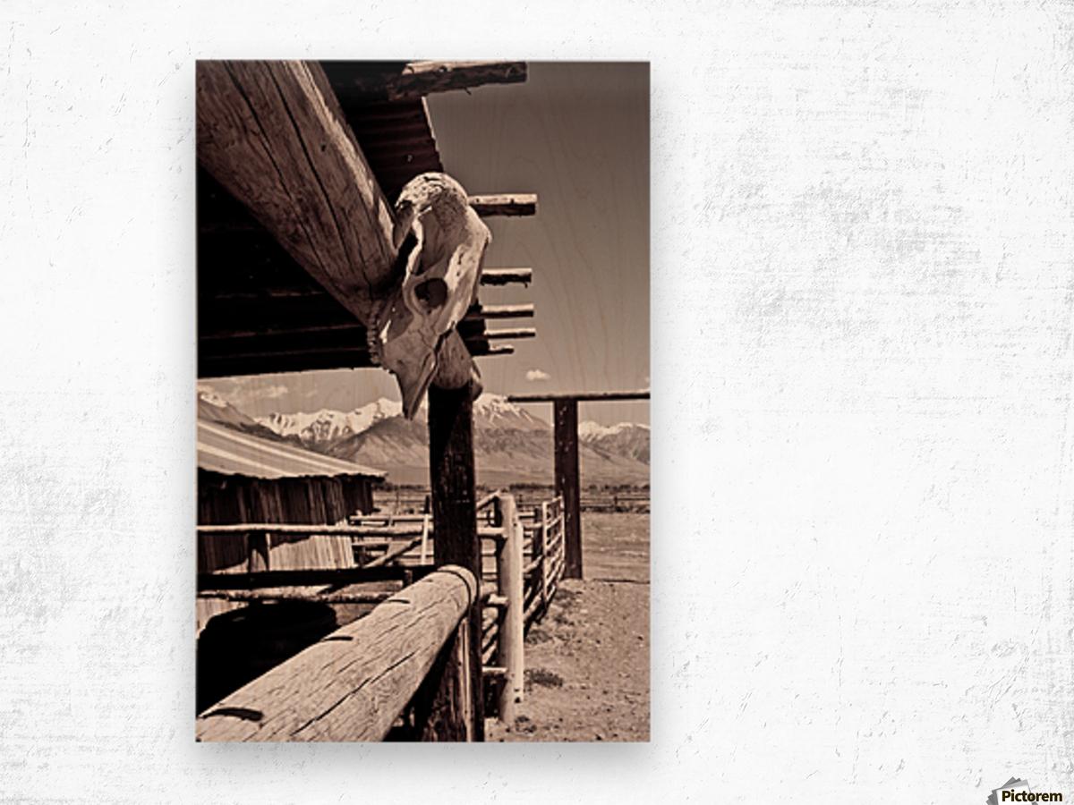 ©lou Freeman Wild West Cowboy Art 1020 21 Wood print