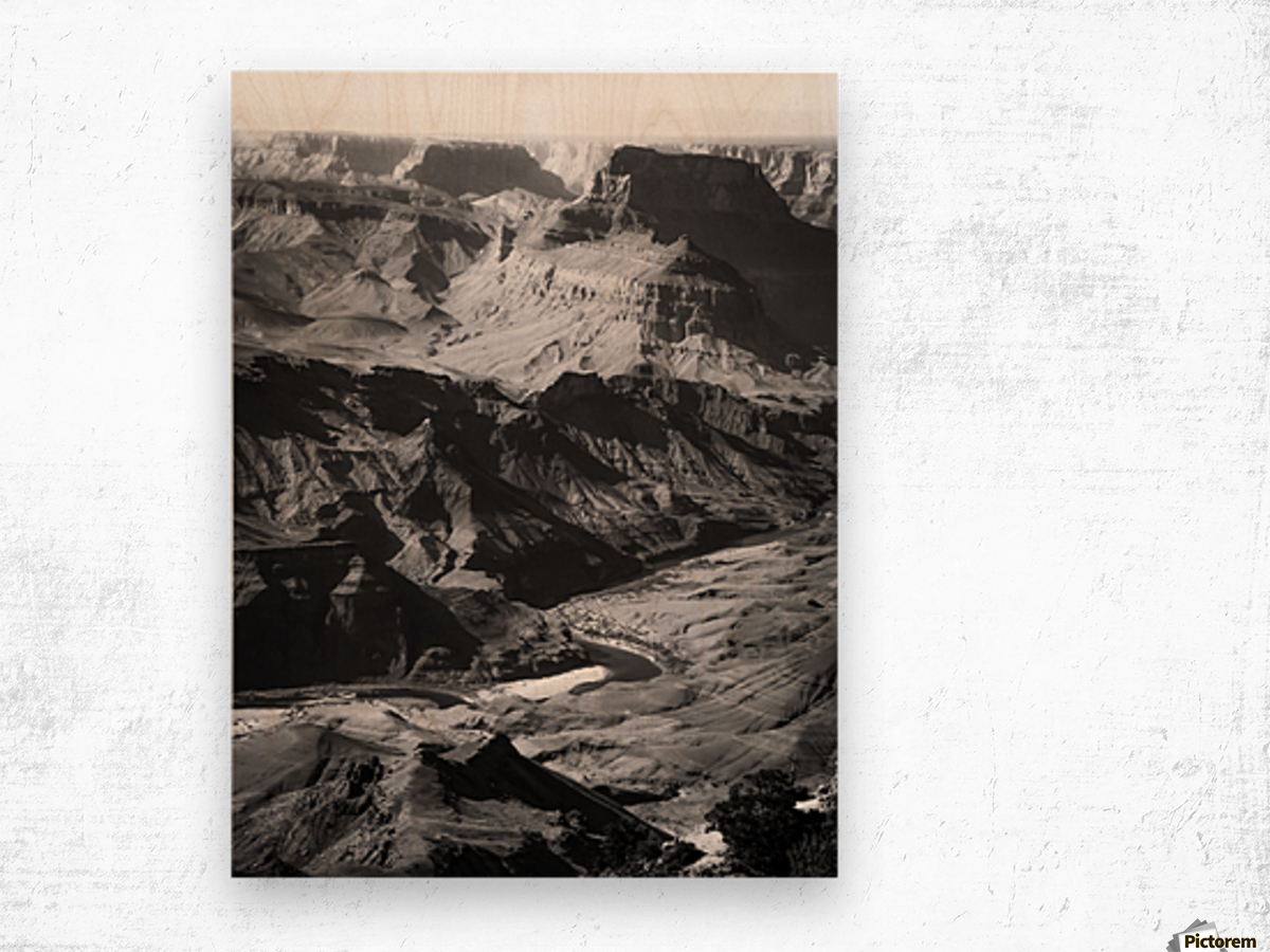 Desert at Grand Canyon national park, USA in black and white Wood print