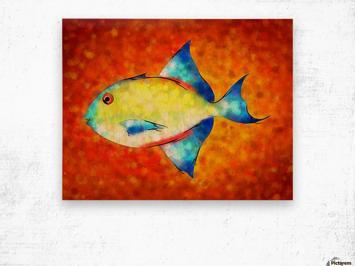 Esperimentoza - gorgeous fish - Cersatti Art Canvas